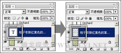 photoshop完全自学教程 将文字转换为图像 路径或形状