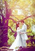 photoshop将翠绿的树林婚片调出柔美黄紫色秋季效果