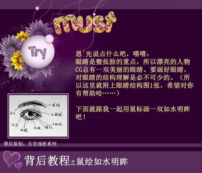眼部皮肤结构图皮肤表皮层结构图鼻腔与眼部结构图