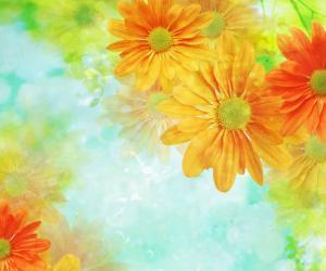 超美丽的迷幻花朵背景