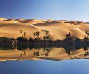 漂亮的沙漠绿洲
