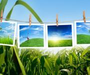 绿色清爽的风景多框小相框