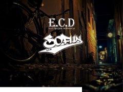 ECD标志