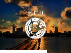 ECD,手标志